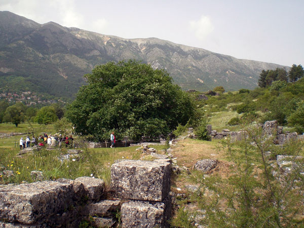 The ruins of Dodona (Photo: Robert Elsie, May 2007)