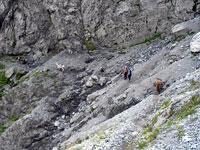 ostwärts tadschikische gastfreundschaft